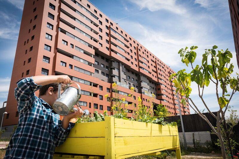 Huertos ecológicos en las ciudades